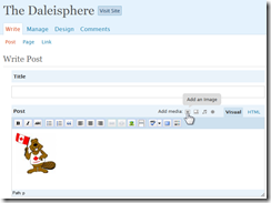 Daleisphere WordPress 2.5 Editor with picture