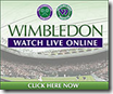 Wimbledon 2009 Live Streaming – Bootleg Version