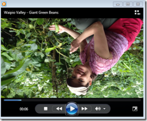 Easily Rotate iPhone 4S Videos with Freemake Video Converter
