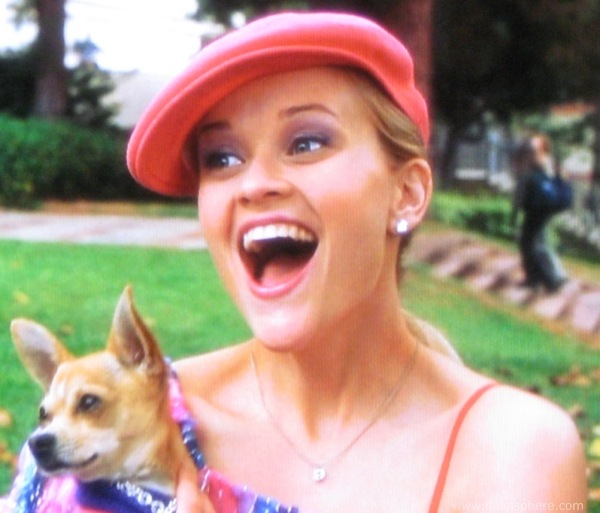 http://www.daleisphere.com/wp-content/uploads/legally-blonde-2001-reese-whitherspoon-holding-her-dog-bruiser.jpg